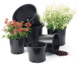 Flower Pot Information