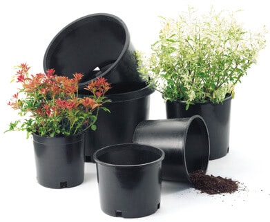 Flower Pot Information