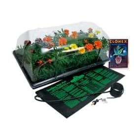Indoor Greenhouse Gardening