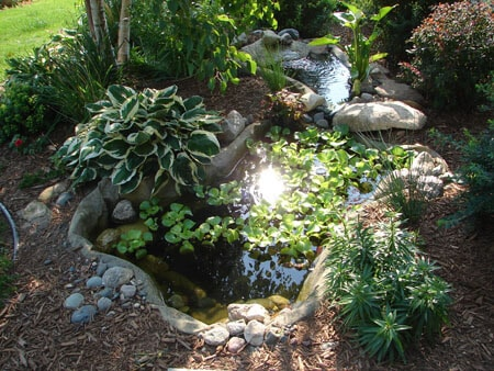 Transforming Your Yard with a Pre-Formed Pond Liner