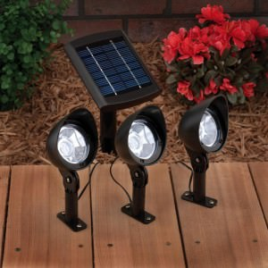 Yard Illuination with A Solar Spot Light