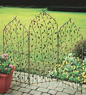 Beautify the Garden with a Decorative Trellis