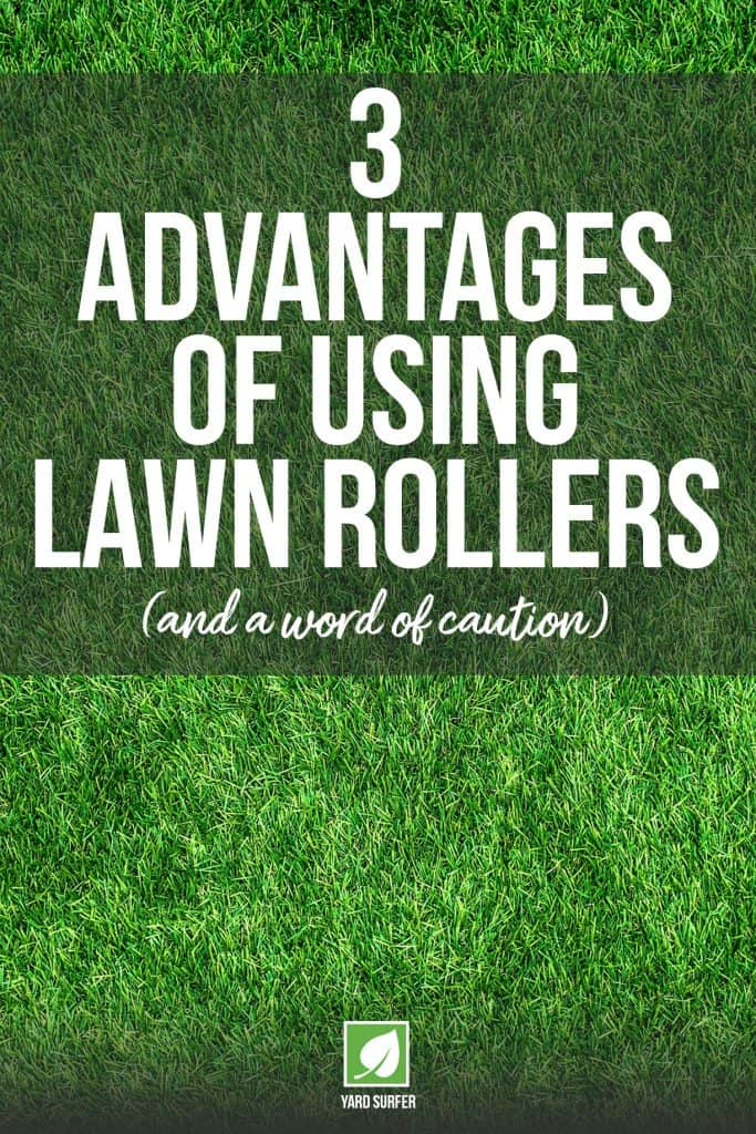3 Advantages of Using Lawn Rollers and a Word of Caution