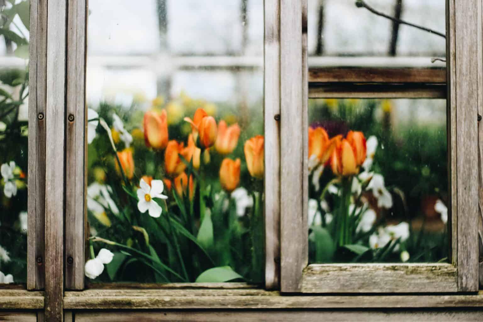 Greenhouse Window Ideas