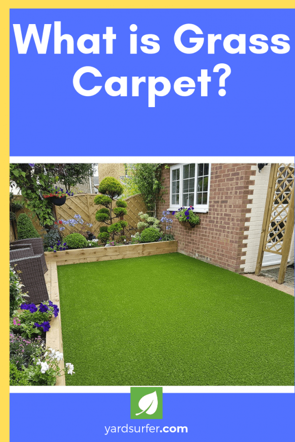 What is Grass Carpet?