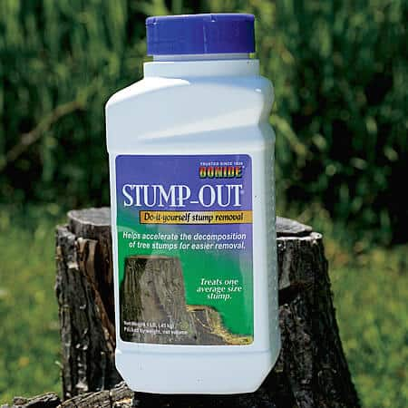 Stump Remover 101 – 4 Easy Methods to Remove Tree Stumps