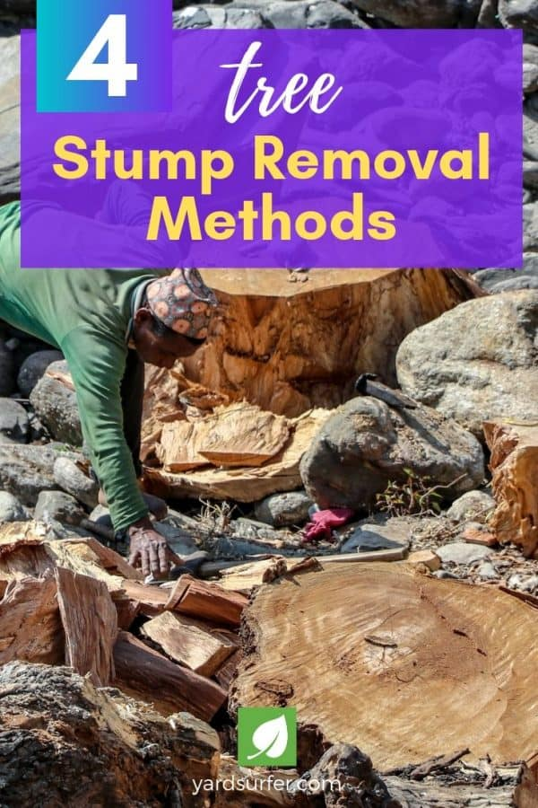 Stump Removal Methods