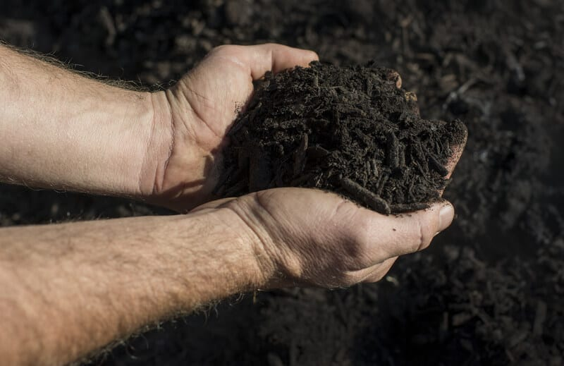 In simple terms, composting is a process that results in having a nutrient-rich humus to apply to soils wherever you like. This nutrient rich mix restores vitality and fuels vigorous growth in plants when applied.