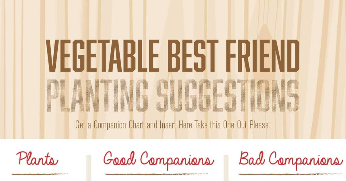 Companion Planting Chart (Guide)