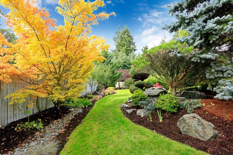Beautiful backyard landscape design. View of colorful trees and decorative trimmed bushes and rocks. This location is one of the best examples of backyard landscaping. This backyard features a long, widing grass path as its main attraction.