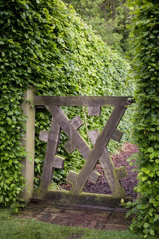 Entrance to a hedged garden. Wooden garden gates don't have to be boring. Here's a gate that features uniquely shaped wooden posts arranged in an unconventional, yet striking style.