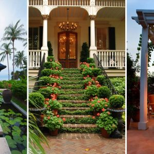 Landscaping Ideas For Backyard And Front Yard