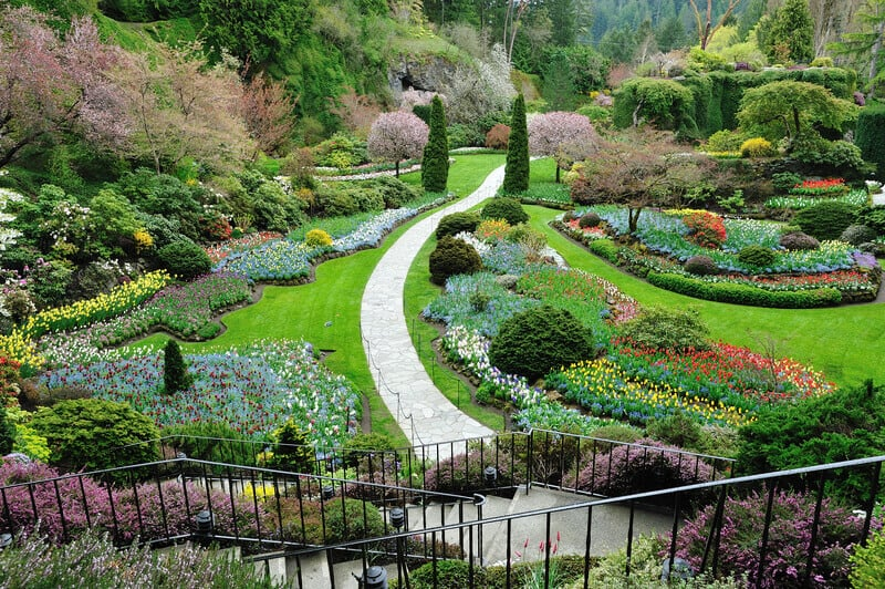 Spring sunken garden inside the historic butchart gardens (over 100 years in bloom), Victoria, British Columbia, Canada.