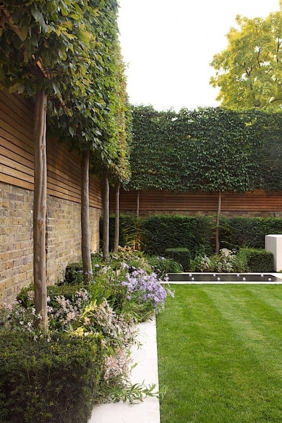 ivy garden fence design