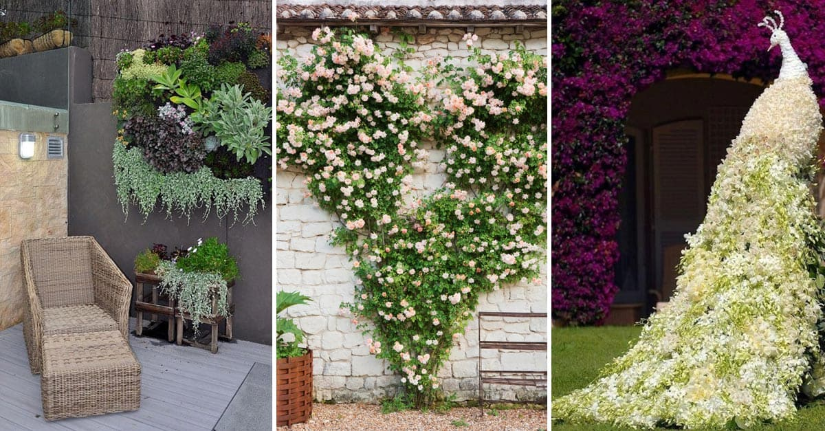 15 Gorgeous Wall Garden Ideas