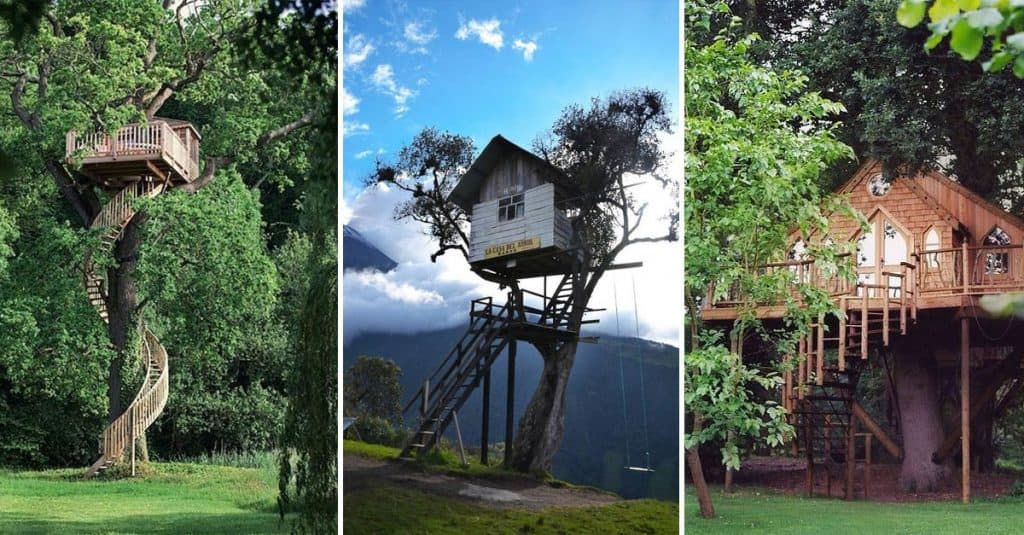 15 Amazing Tree House Design Ideas We Love