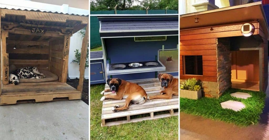 15 Brilliant Dog House Ideas & Designs