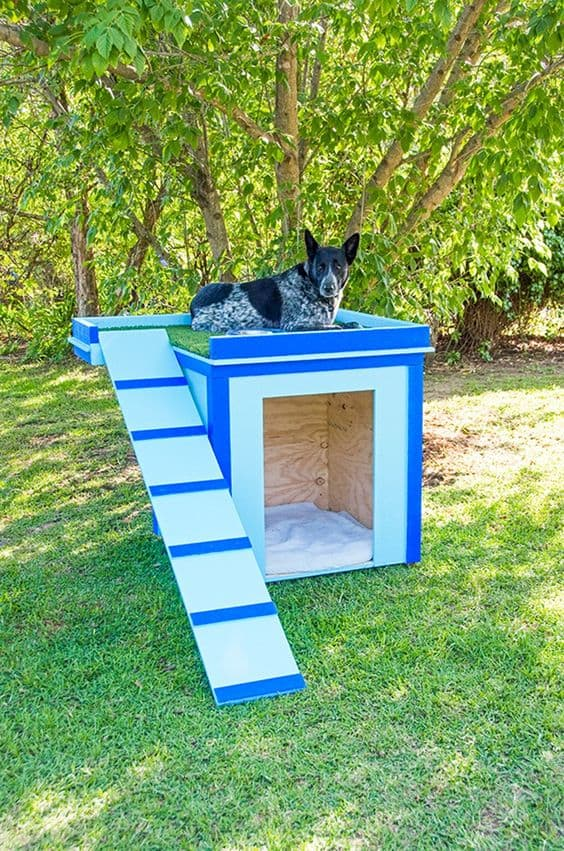 15 Brilliant Dog House Ideas & Designs