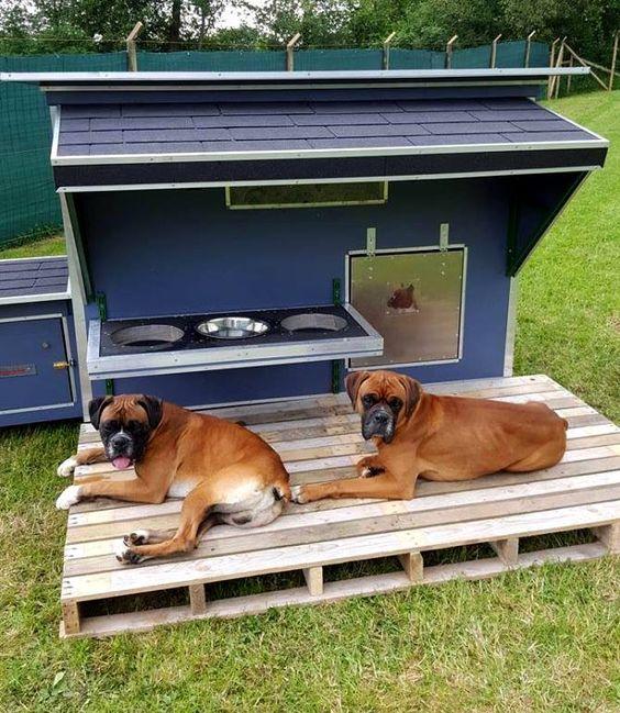 Home Design Ideas For Dogs: 15 Brilliant Dog House Ideas & Designs