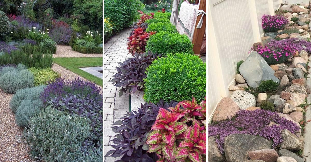 12 Fresh Front And Back Yard Ideas