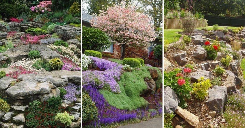 15 Amazing Rock Garden Design Ideas