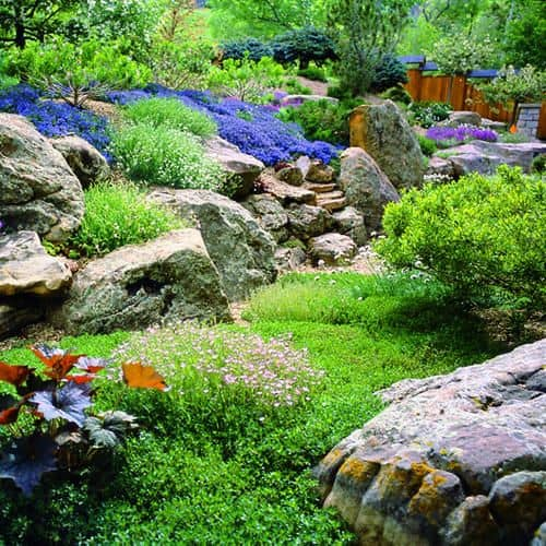 15 Amazing Rock Garden Design Ideas | Yard Surfer on Backyard Rocks  id=55954