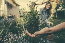 Practice Gratitude Garden