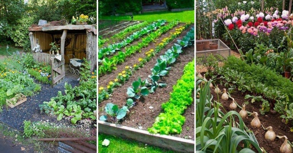 15 Herb & Vegetable Garden Ideas