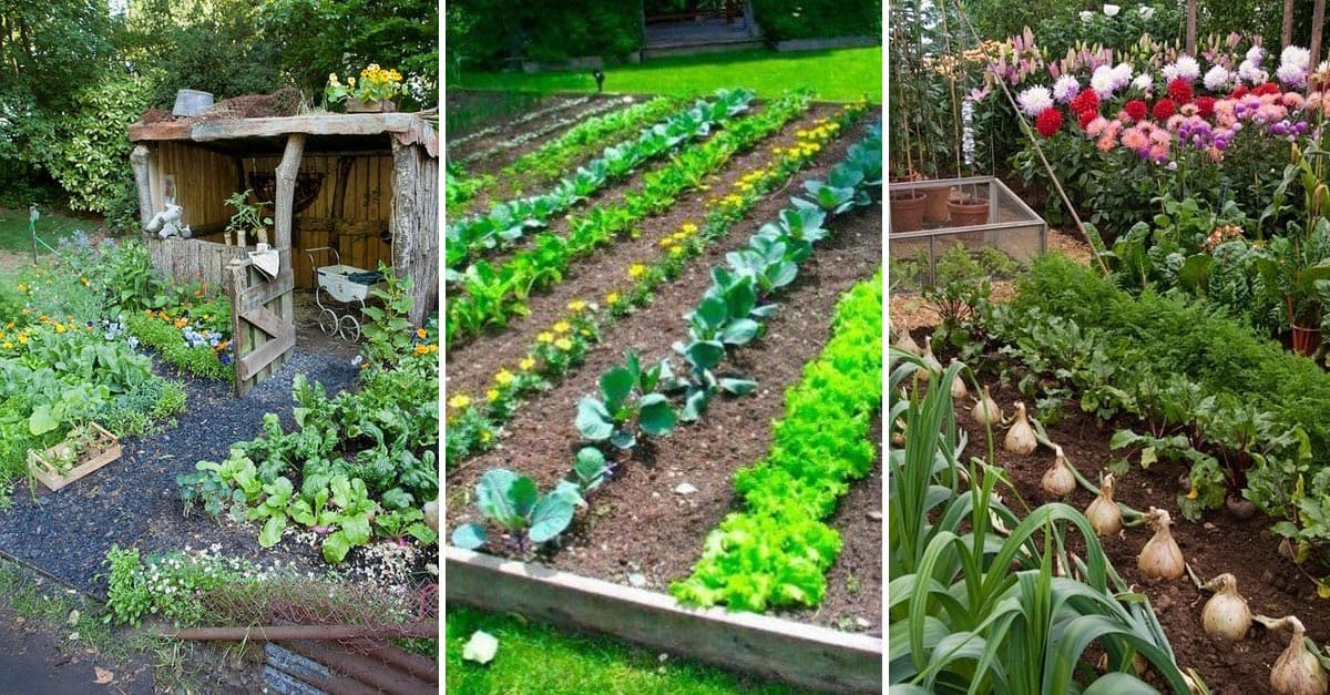 15 Herb & Vegetable Garden Ideas