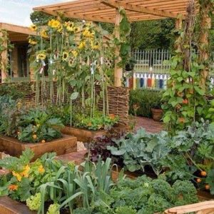 15 Amazing DIY Raised Garden Beds