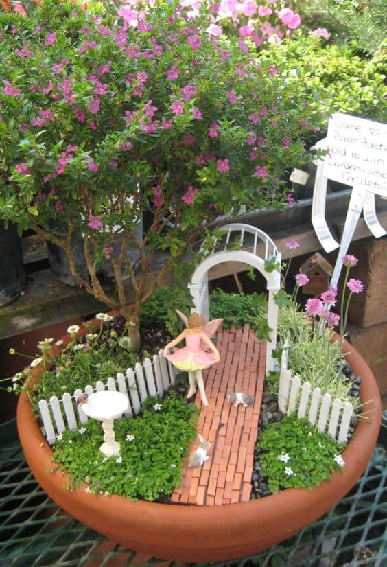 Check out these ideas with Bonsai in the Garden.