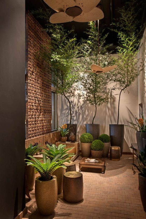 Check out these ideas for roof garden.Check out these ideas for roof garden.