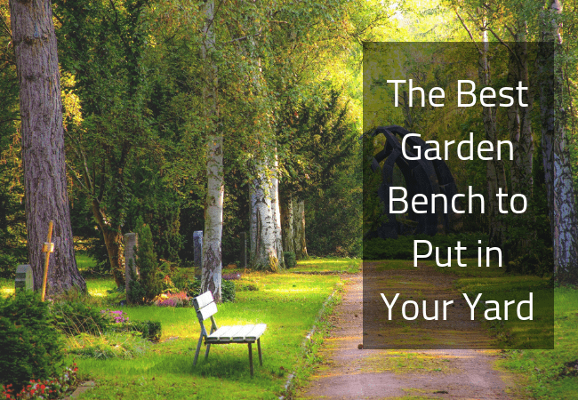 The Garden Bench to Have