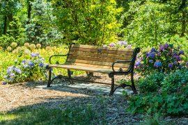 Garden bench in beautiful greenery