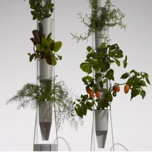 Picture vertical plant growing pod