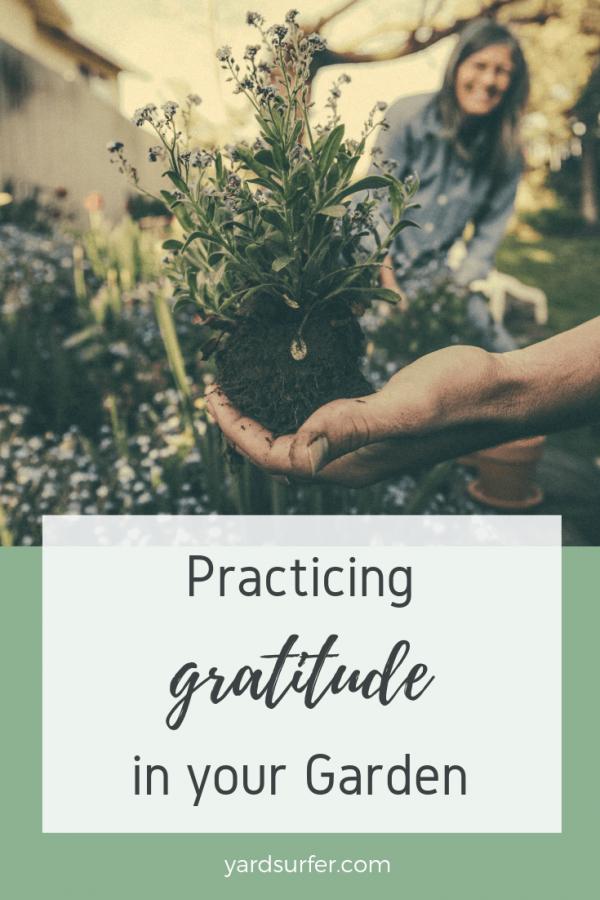 Practice Gratitude in Your Garden
