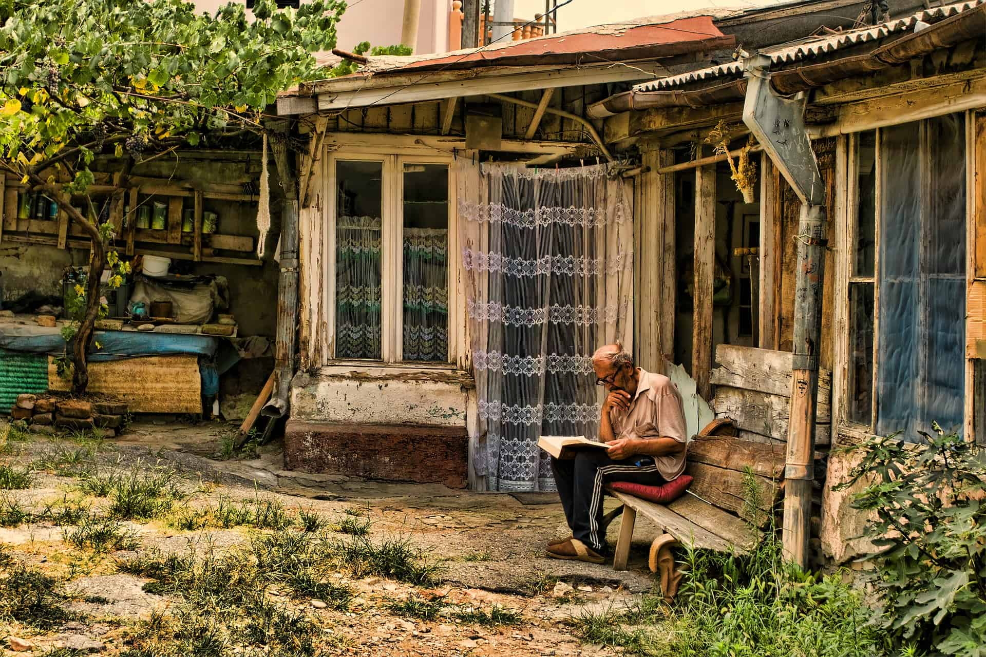 Old Man Reading Garden