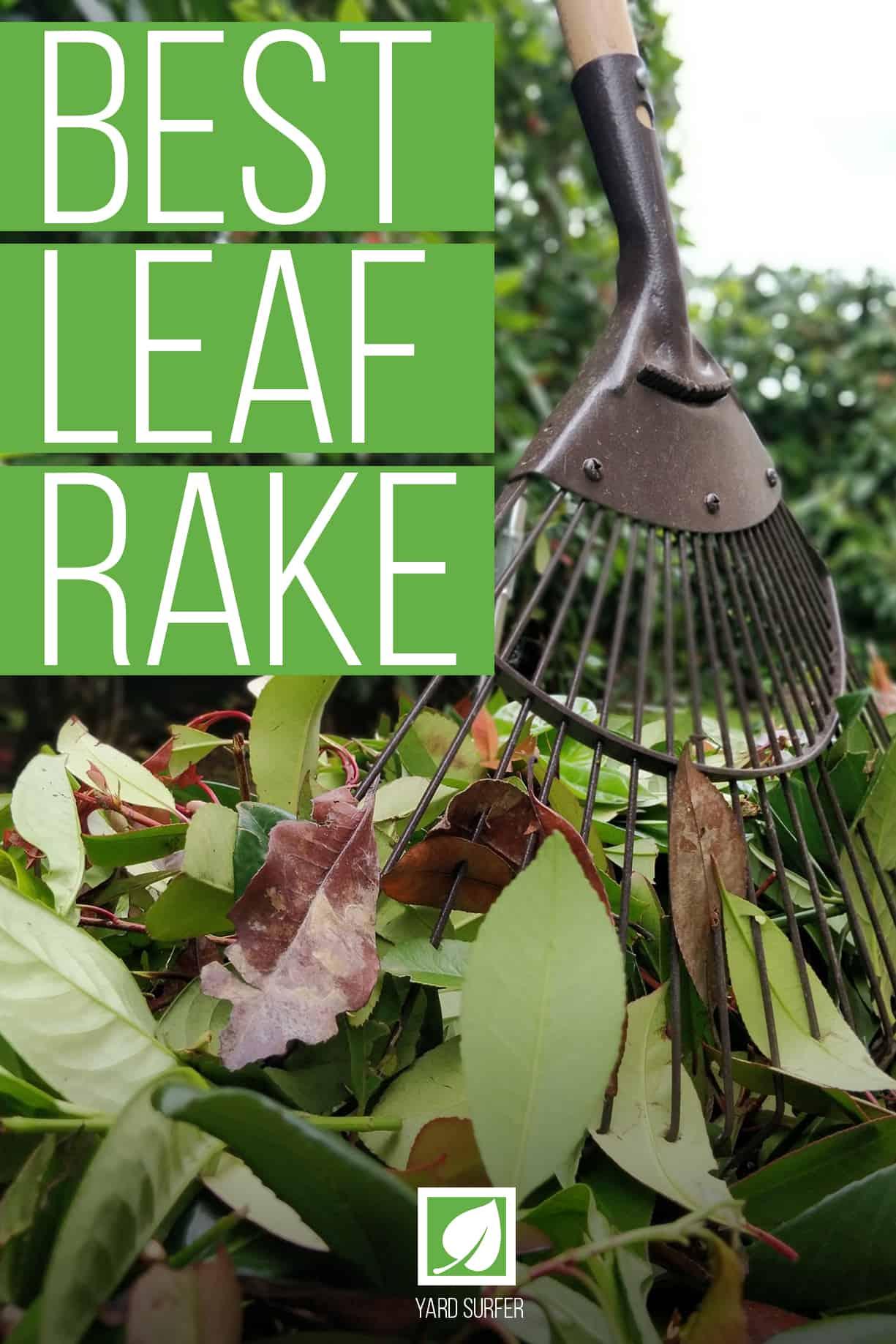 Best Leaf Rake