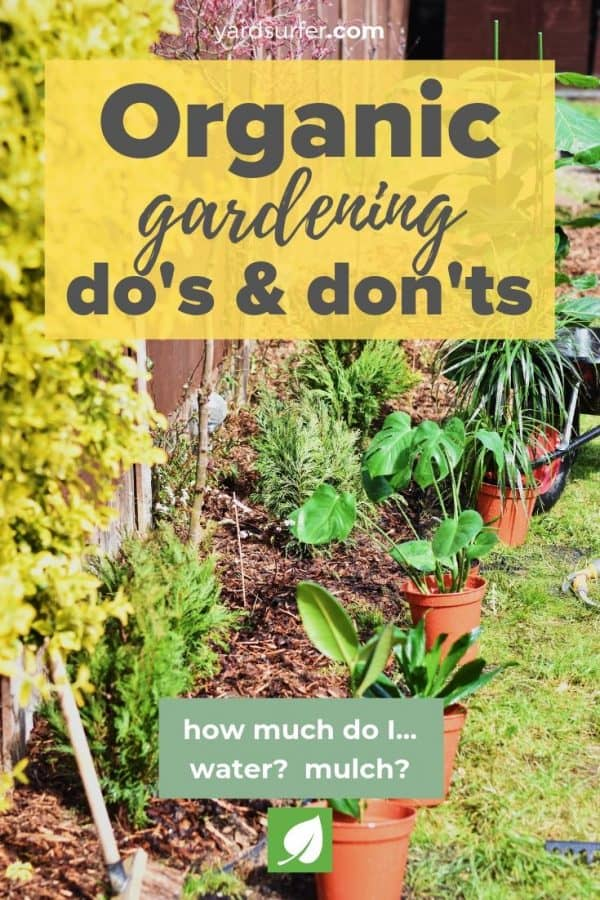 Organic Gardening Do's and Don'ts