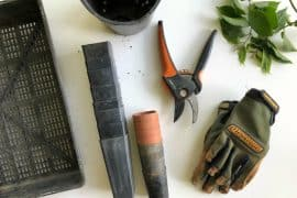 4 Best Tools for Low Maintenance Landscaping