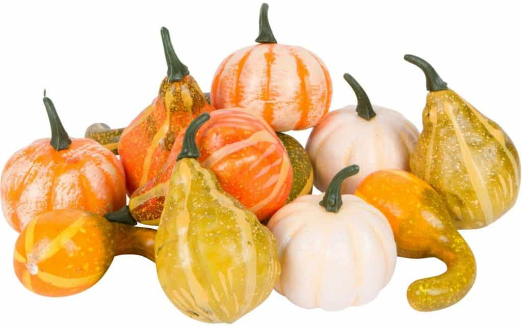 mini plastic pumpkins and gourds