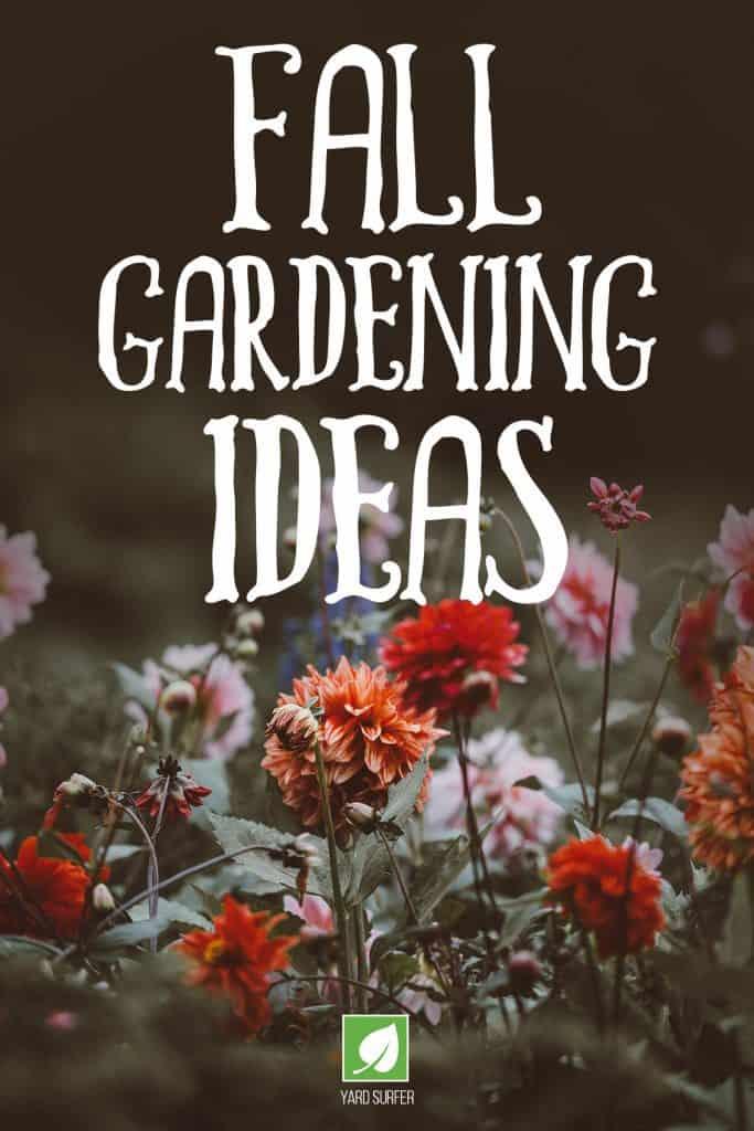 Fall Gardening Ideas