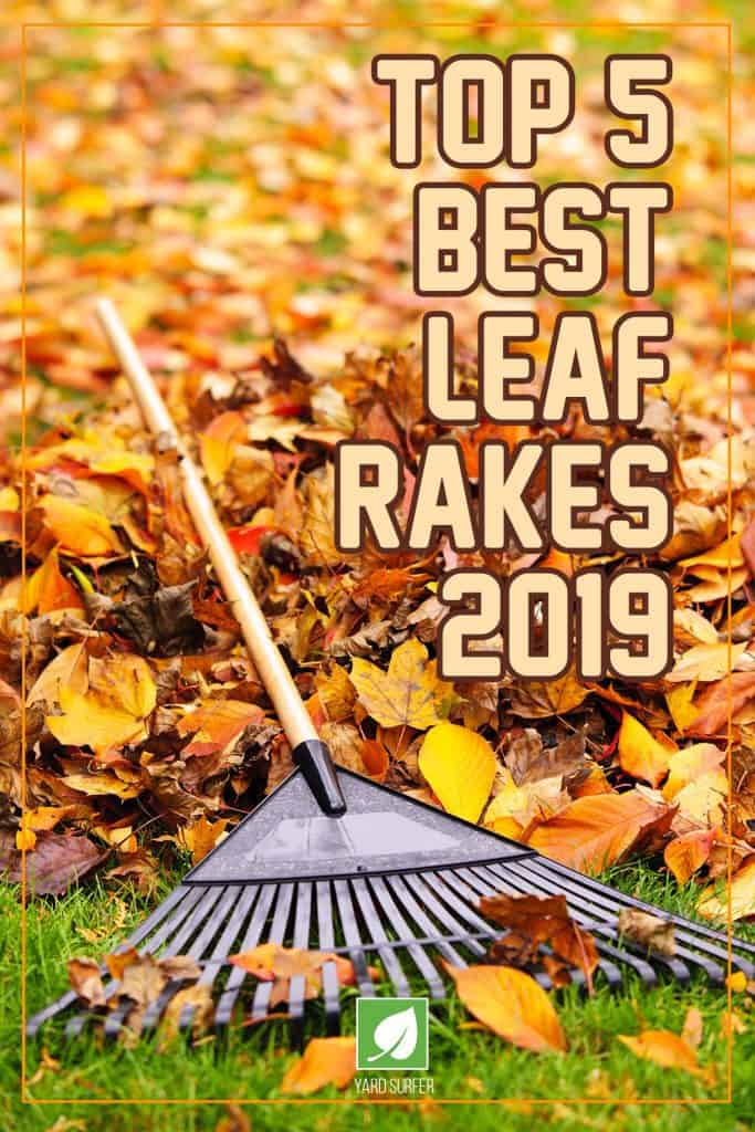 Top 5 Best Leaf Rakes 2019