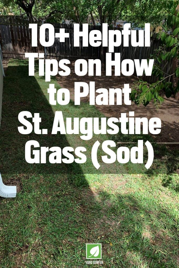 How to Plant St Augustine Grass (Sod)