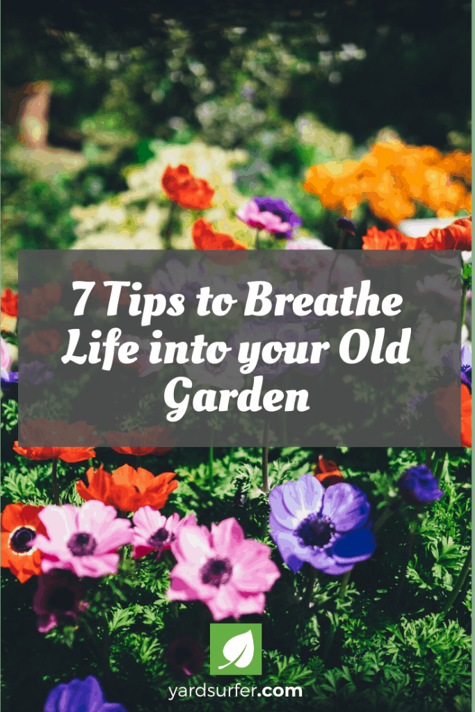 7 Tips to Breathe Life into your Old Garden