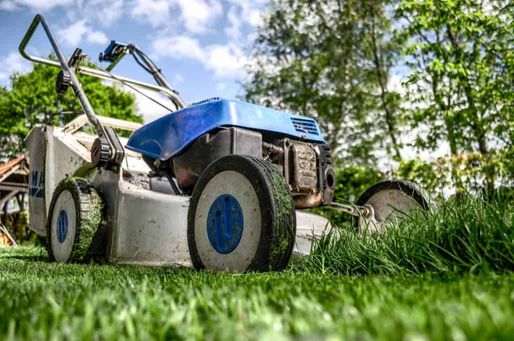 8 Fall Lawn Care Tips and Things To Do Before The Season Ends