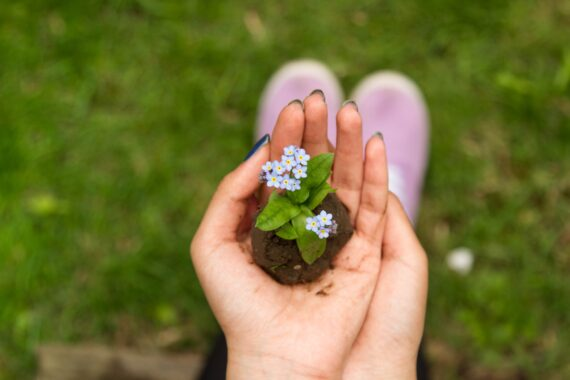 6 Reasons Why You Should Keep Your Gardening Hobby
