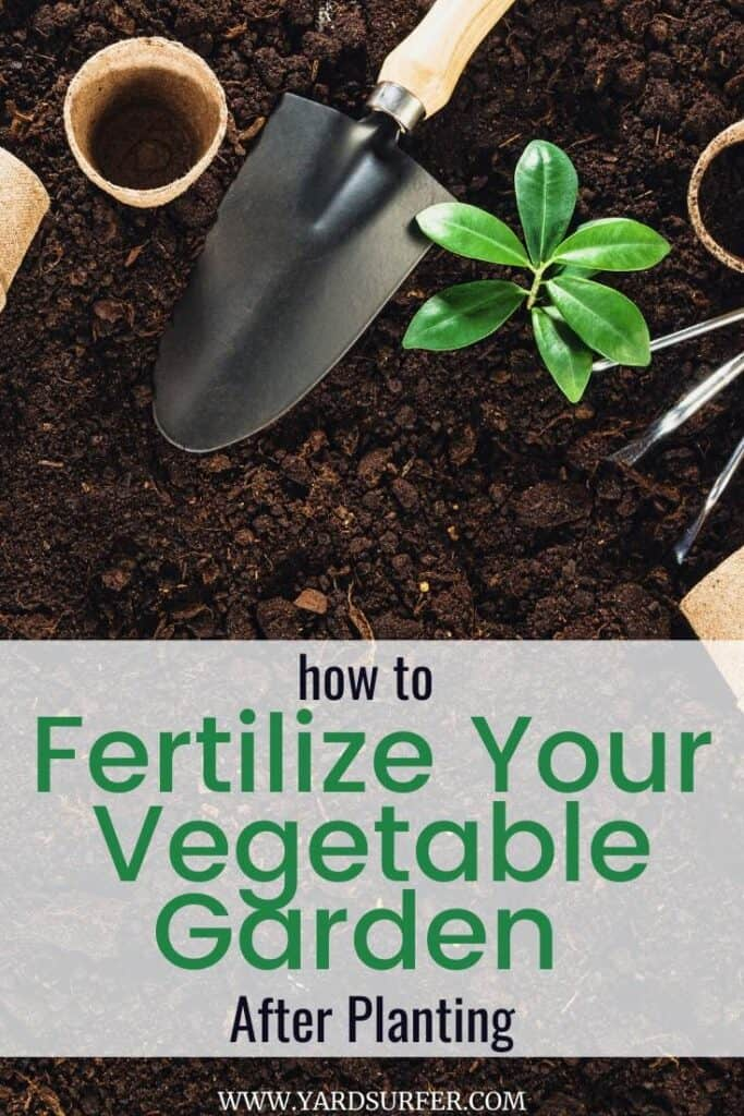 How to Fertilize Your Vegetable Garden After Planting