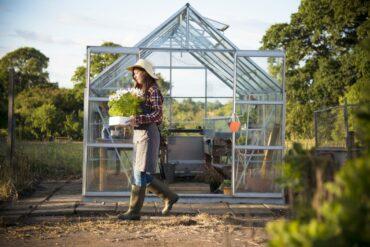 Greenhouse Vegetable Garden