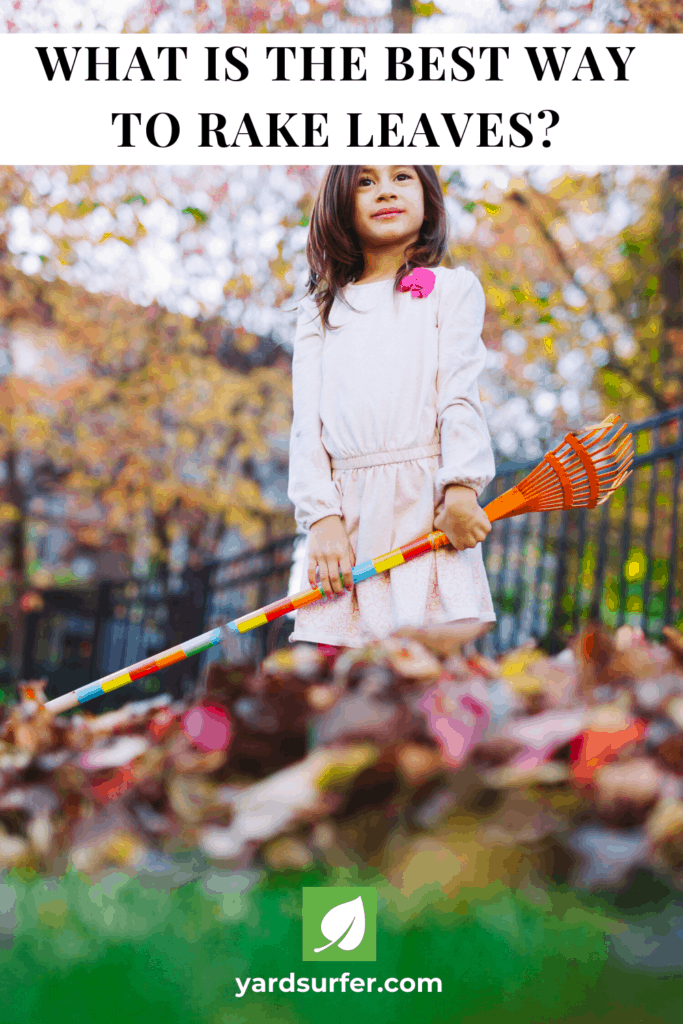 What is the Best Way to Rake Leaves?